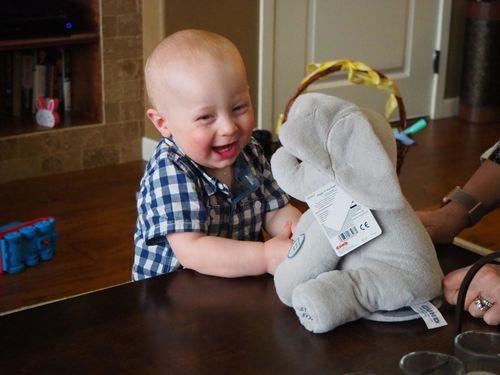 Baby Peek A Boo Animated Singing Elephant photo review