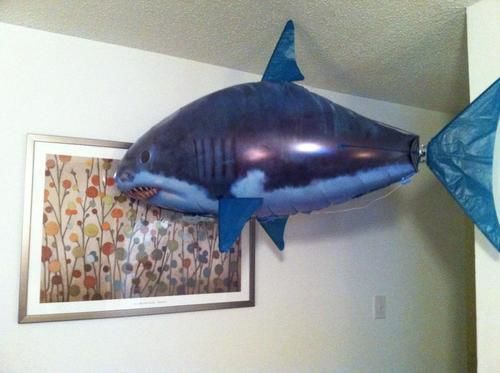 Amazing Air Shark-Updated Version photo review