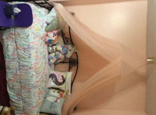 Dome Princess Mosquito Net Bed Canopy Hanging House Decoration photo review