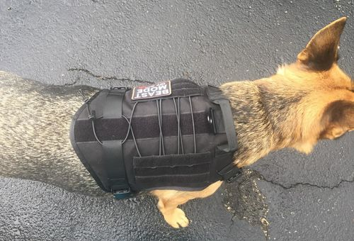 Military Tactical Dog Harness photo review